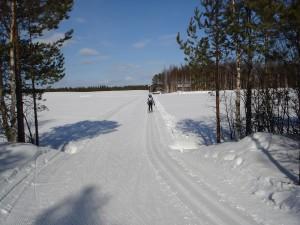 hiihtäjä2